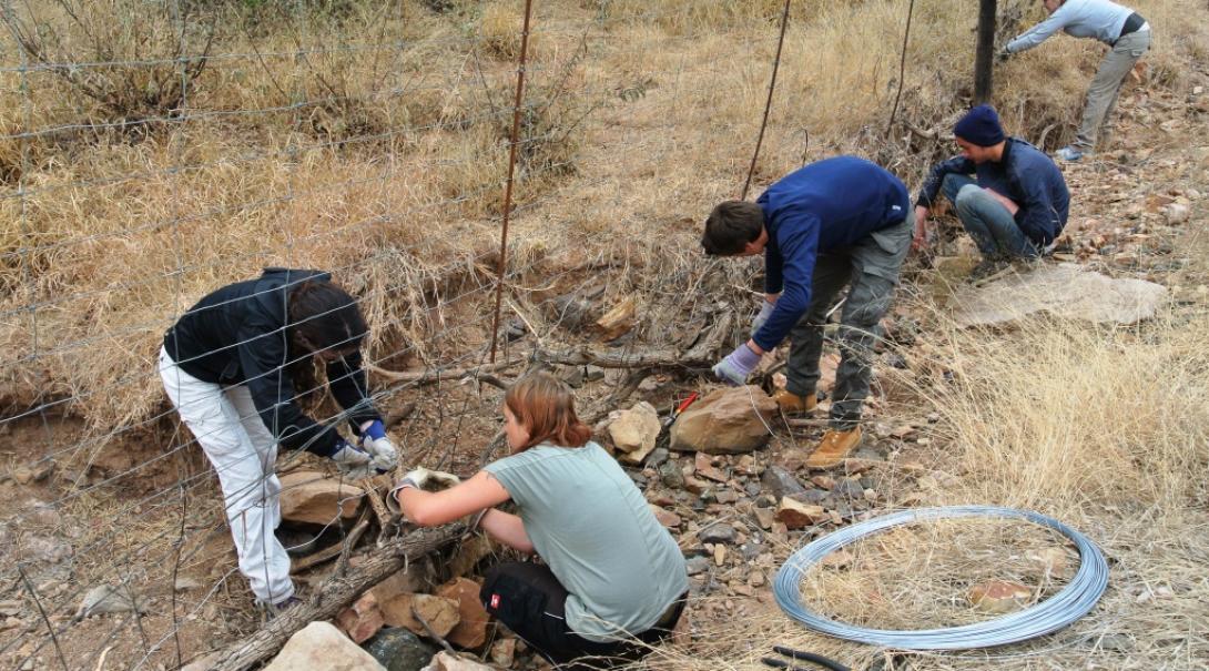 Les écovolontaires de Projects Abroad au Botswana retirent des pièges de braconnage
